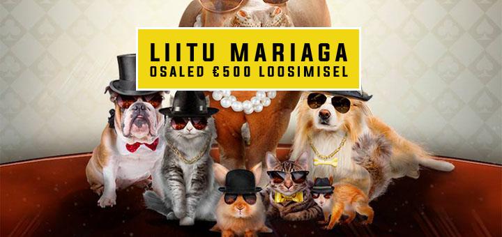 Liitu Maria Kasiinoga ja võida 500 eurot sularaha