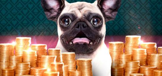 Maria Kasiino loosib novembris iga päev 1000 eurot sularaha