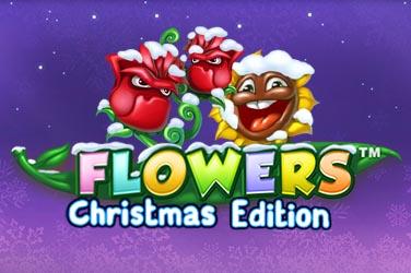 Flowers Christmas Edition slot - mängi tasuta
