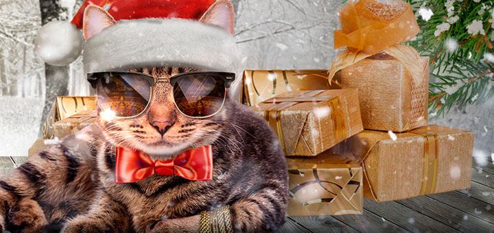 Maria Live Kasiino Blackjack jõulupakkumine