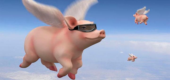 Lendavad sead toovad Chanz kasiinos 500-eurose võidu