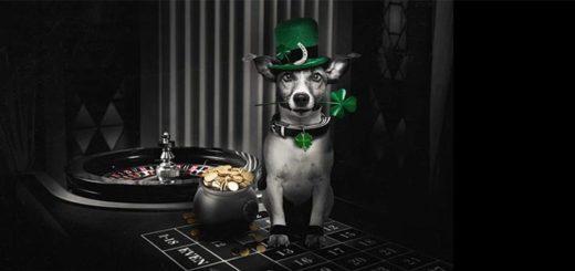 Püha Patricku päeva ruletivõistlus Betsafe live kasiinos