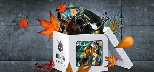 Ninja Casino sügise sõdalase missioon