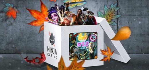Ninja Casino viimane novembrikuu väljakutse